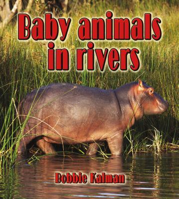 Baby Animals in Rivers By Kalman, Bobbie